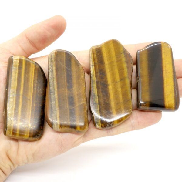 Tiger's Eye, Gold Polished Slices 40-60g 3