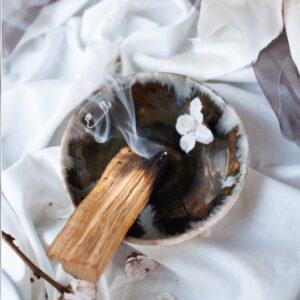 Palo Santo stick in bowl
