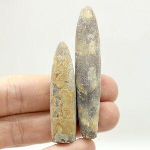 Belemnite Fossils 10-20g 2 B02 1