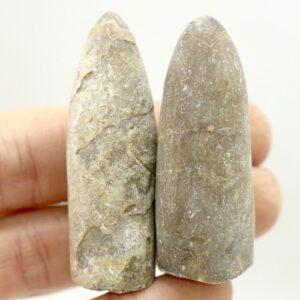Belemnite Fossils 30-40g 2 B02 1
